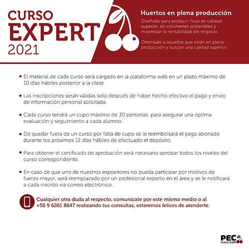 PEC E-LEARNING EXPERT 2021