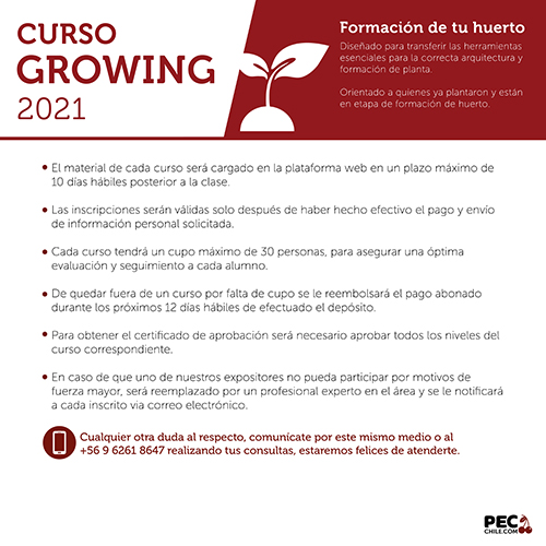 PEC E-LEARNING GROWING 2021