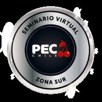 logo_osorno_virtual
