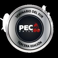 logo-seminariodelsur2021