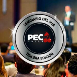 Seminario del Sur Cerezo 2021